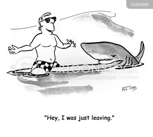 kiteboarding cartoon