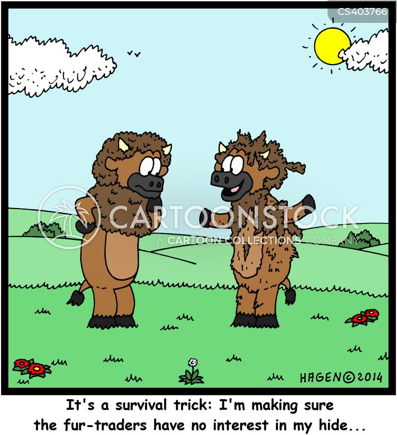 fur trade cartoon