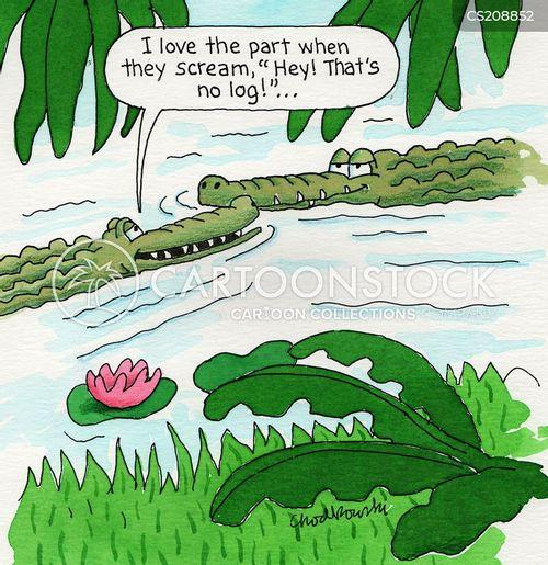 gator attacks cartoon