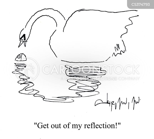 reflected cartoon
