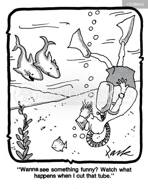 aquatic life cartoon