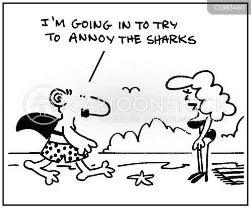 shark fin cartoon