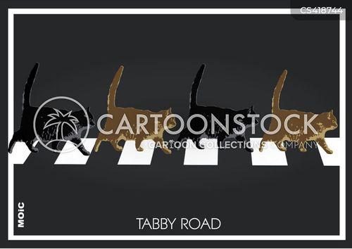 album cover cartoon