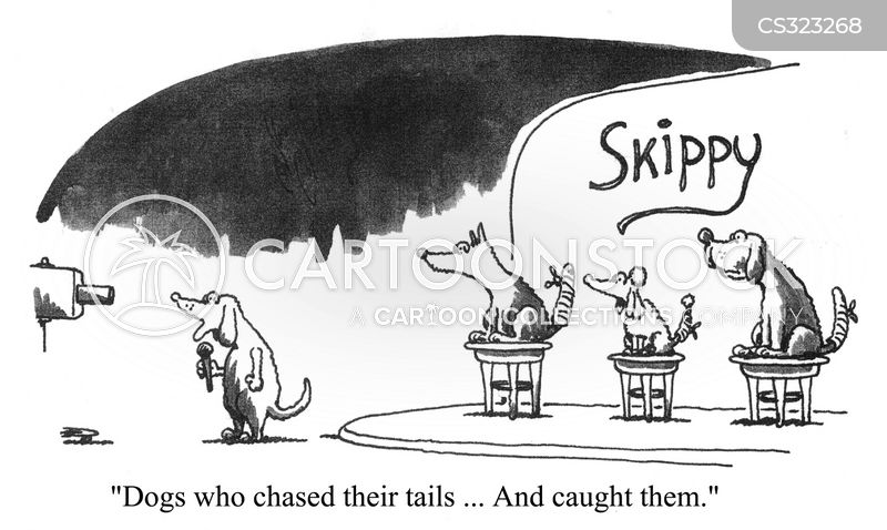 chasing tails cartoon