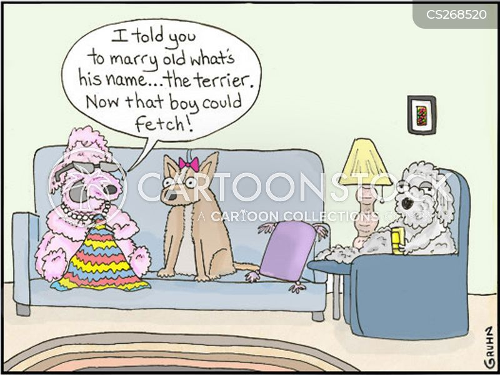 terriers cartoon