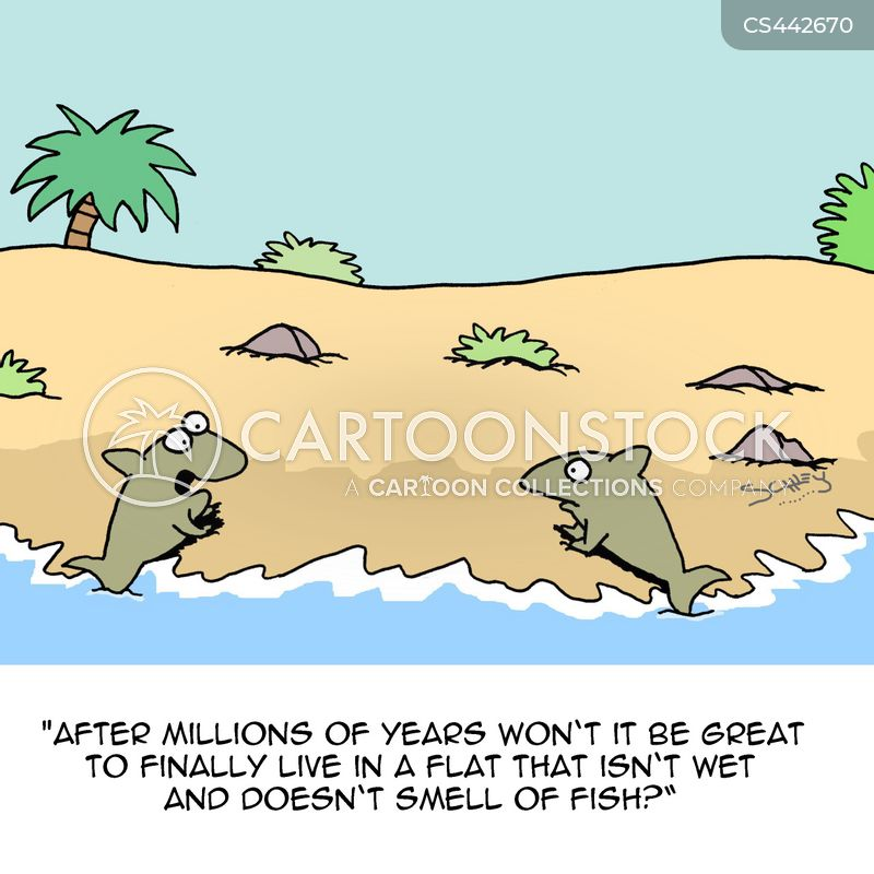 ocean animals cartoon