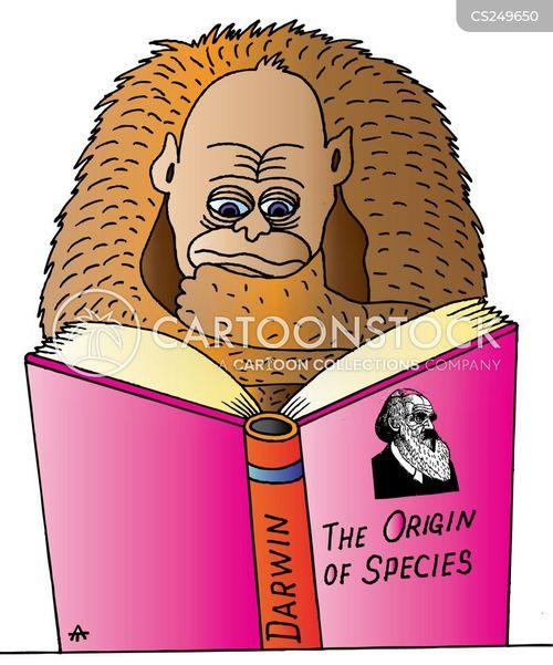 the origin of species cartoon