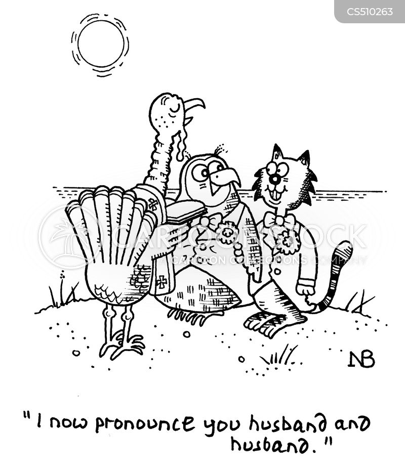 the owl and the pussycat cartoon