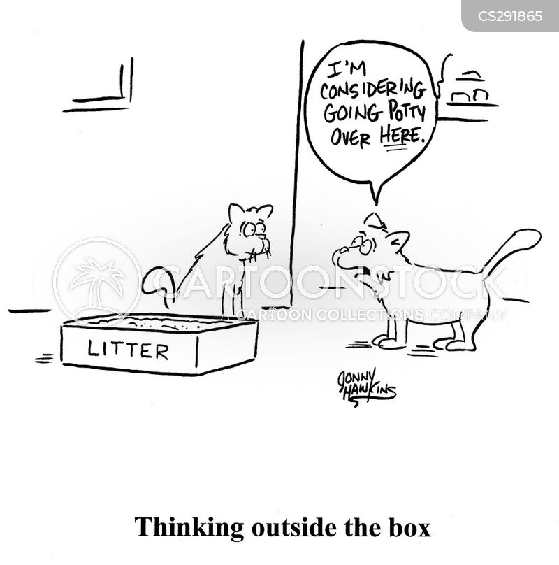 cat poop cartoon