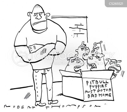 pitbull cartoon