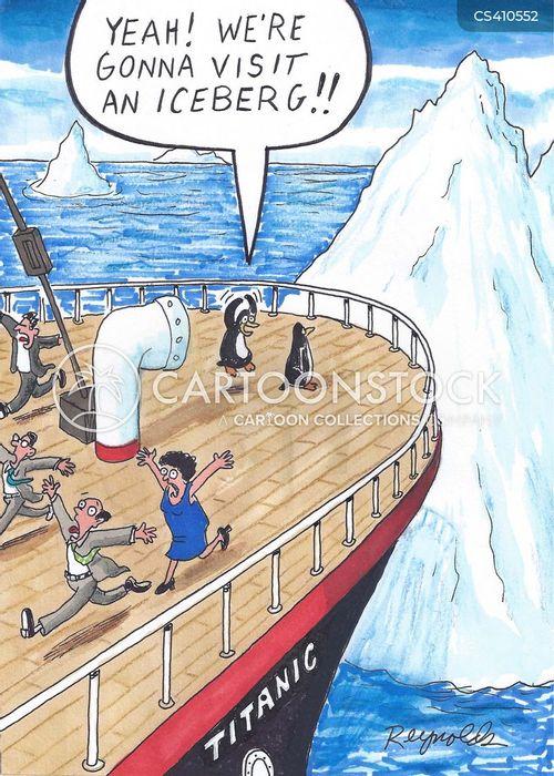 arctic bird cartoon