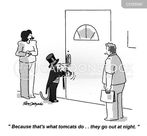 tomcat cartoon