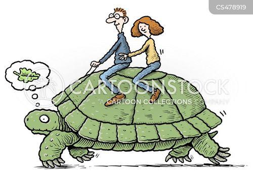 giant tortoise cartoon