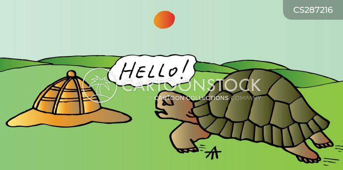 tortoise shells cartoon
