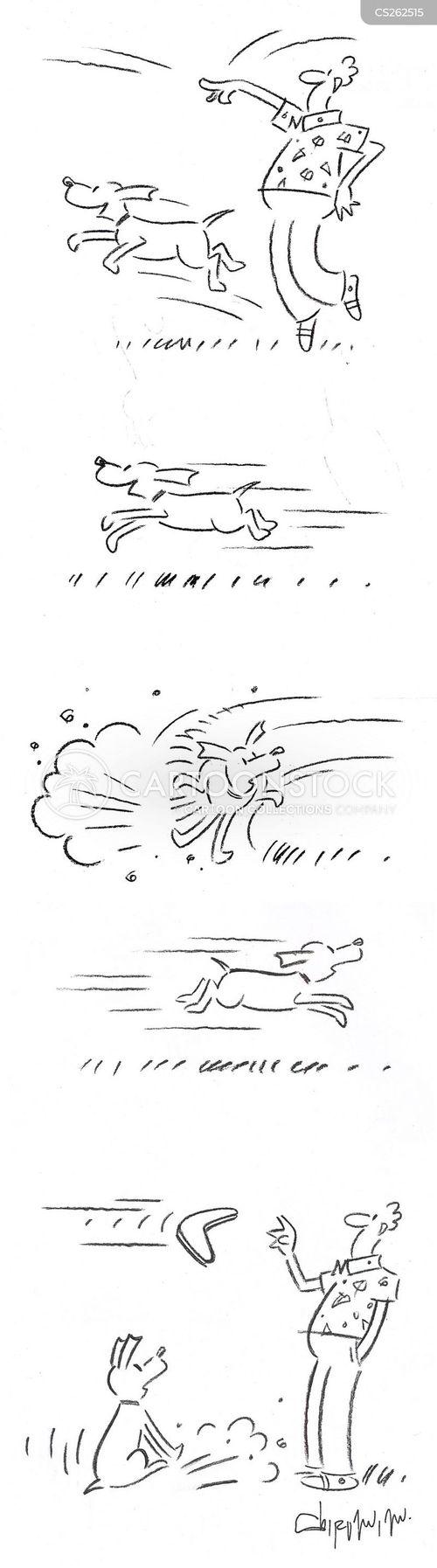 play fetch cartoon