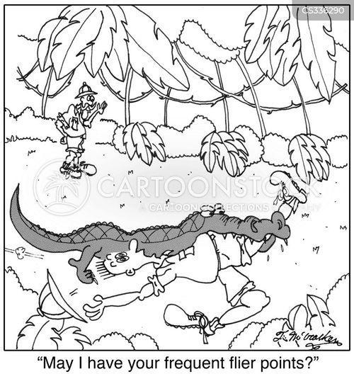 frequent flier points cartoon