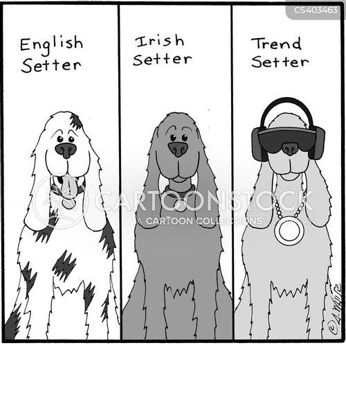 english setter cartoon