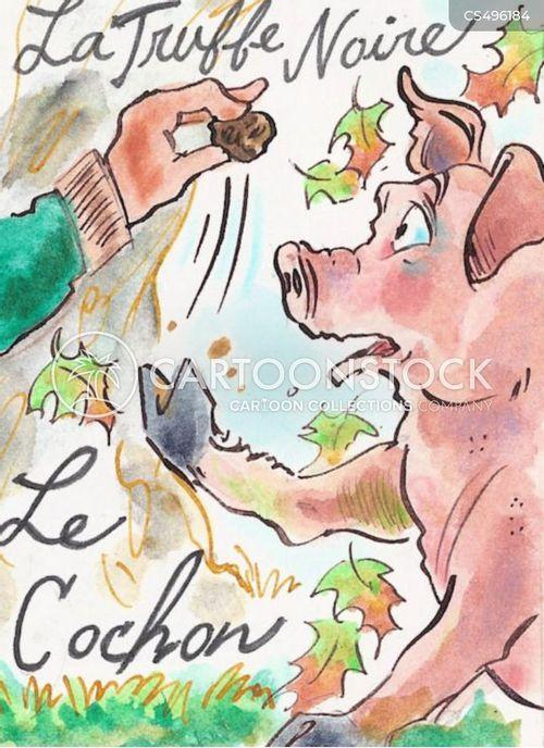 foraging cartoon