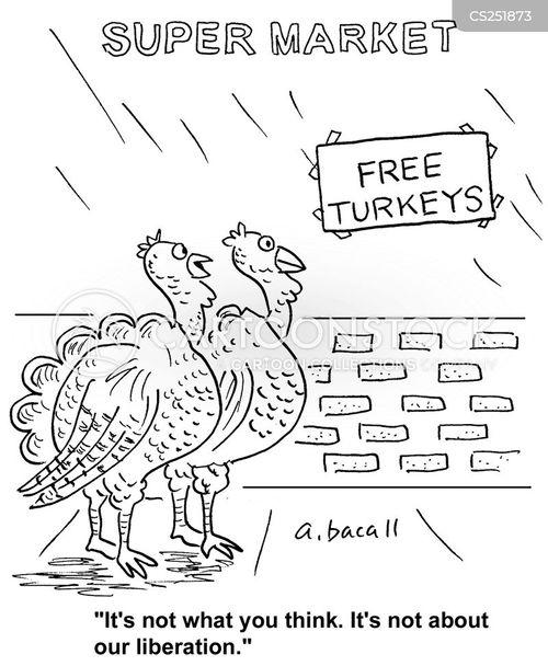 liberation cartoon