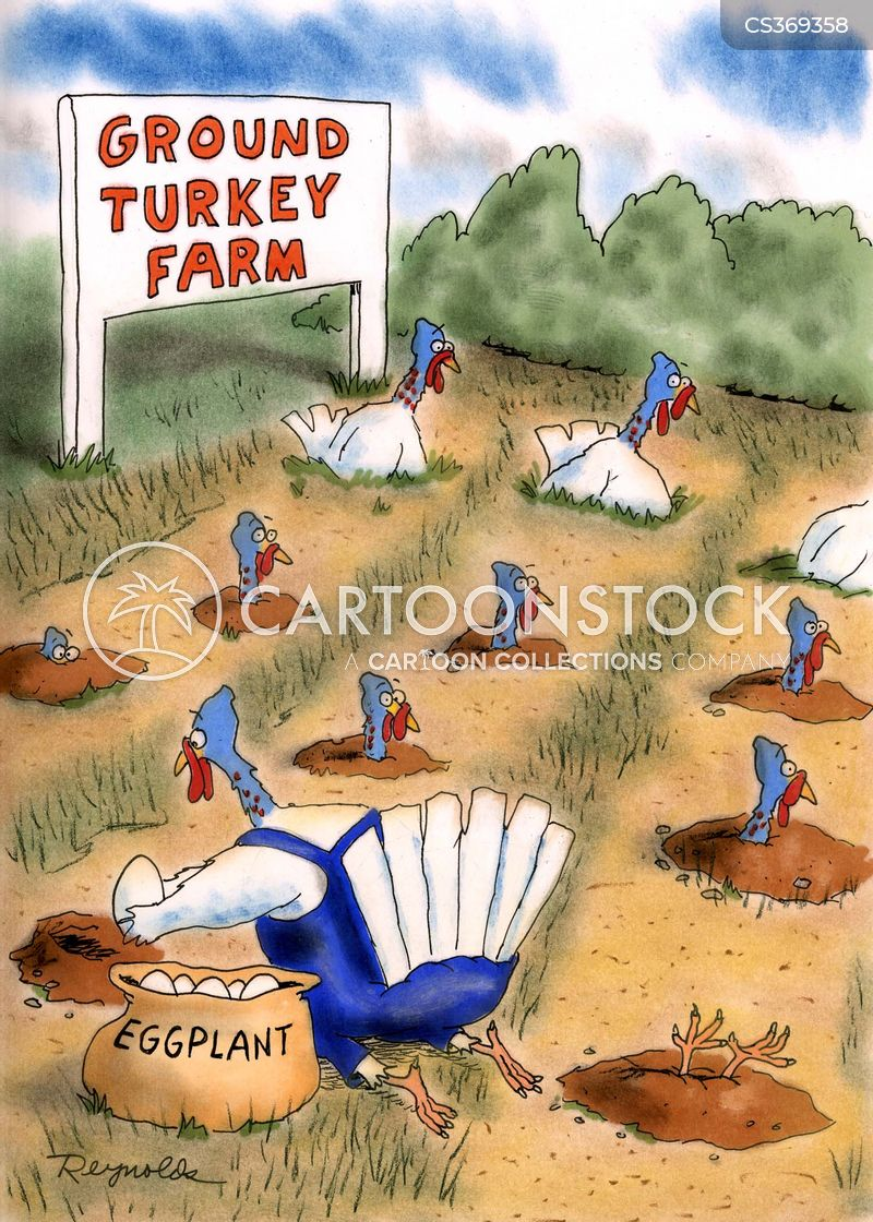 Ground Turkey cartoons, Ground Turkey cartoon, funny, Ground Turkey picture, Ground Turkey pictures, Ground Turkey image, Ground Turkey images, Ground Turkey illustration, Ground Turkey illustrations