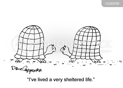 shelters cartoon