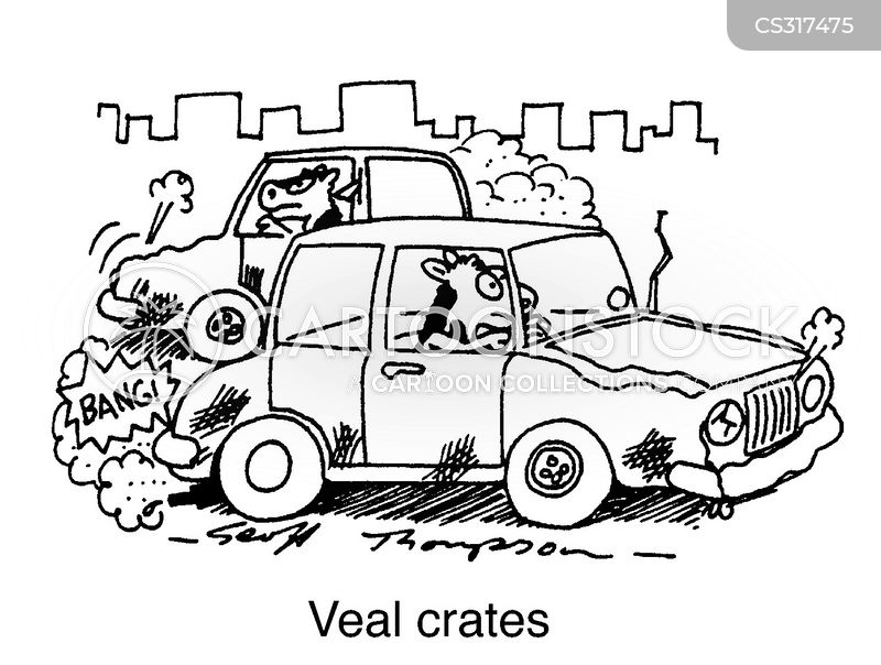 Veal cartoons, Veal cartoon, funny, Veal picture, Veal pictures, Veal image, Veal images, Veal illustration, Veal illustrations