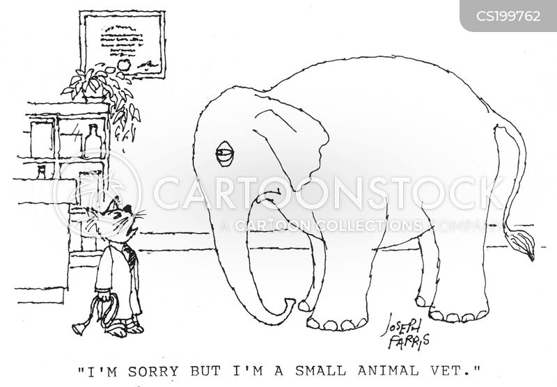 Domestic Pet cartoons, Domestic Pet cartoon, funny, Domestic Pet picture, Domestic Pet pictures, Domestic Pet image, Domestic Pet images, Domestic Pet illustration, Domestic Pet illustrations