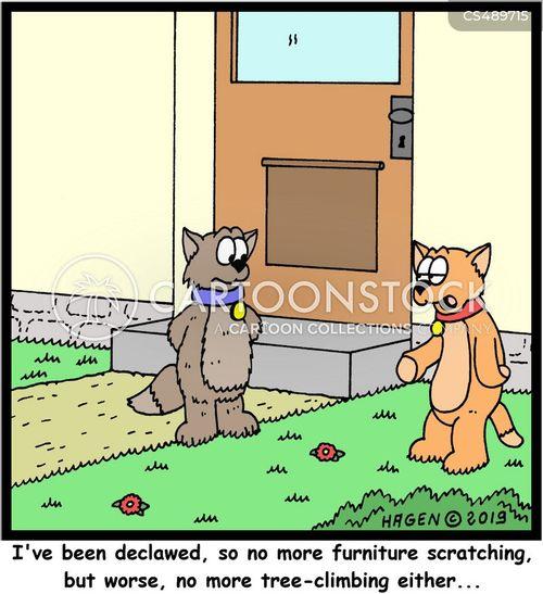 naughty cat cartoon