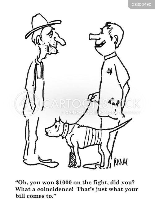 dog fights cartoon