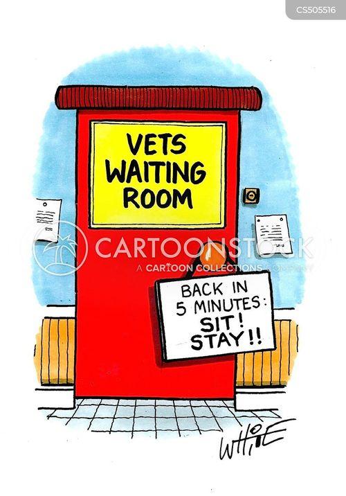 veterinary surgeries cartoon