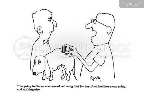 animal healthcare cartoon