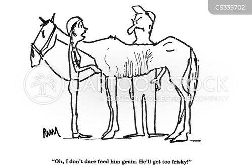 horse feed cartoon