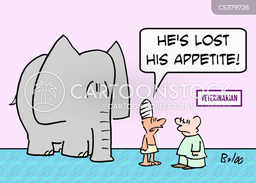 elephant trainer cartoon