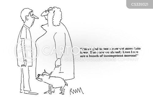 new vets cartoon