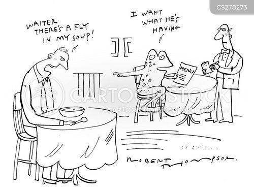 fly in soup cartoon