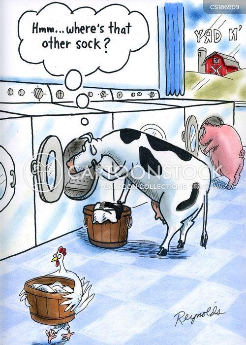laundries cartoon