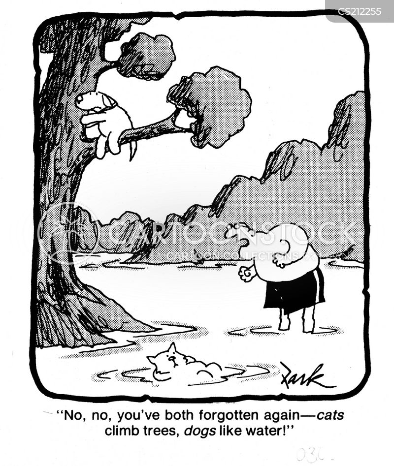 Kid Climbing Tree Climbing Trees Cartoon 7 of 14