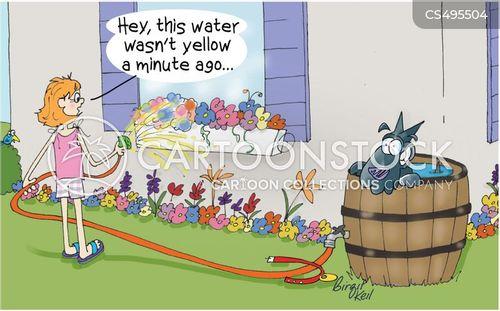 rain water cartoon