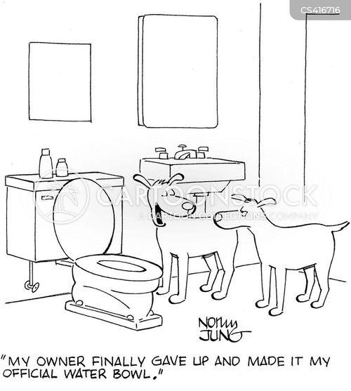water bowls cartoon