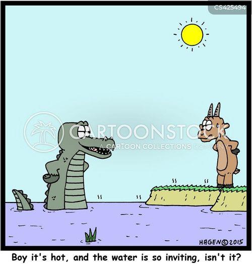 waterholes cartoon