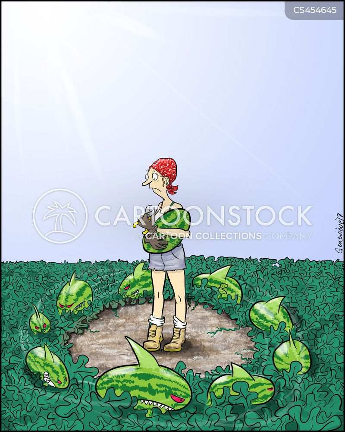 watermelons cartoon