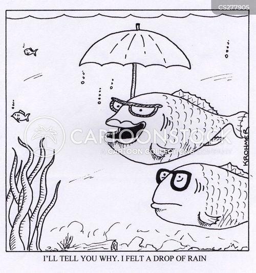 brolly cartoon