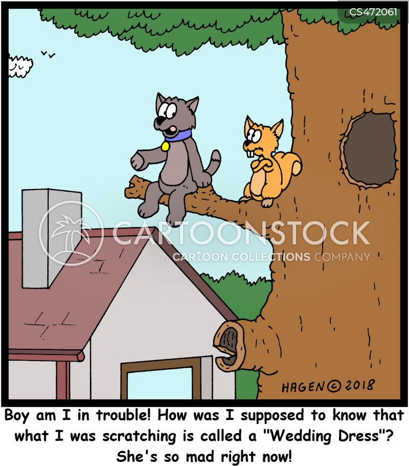 bad cat cartoon