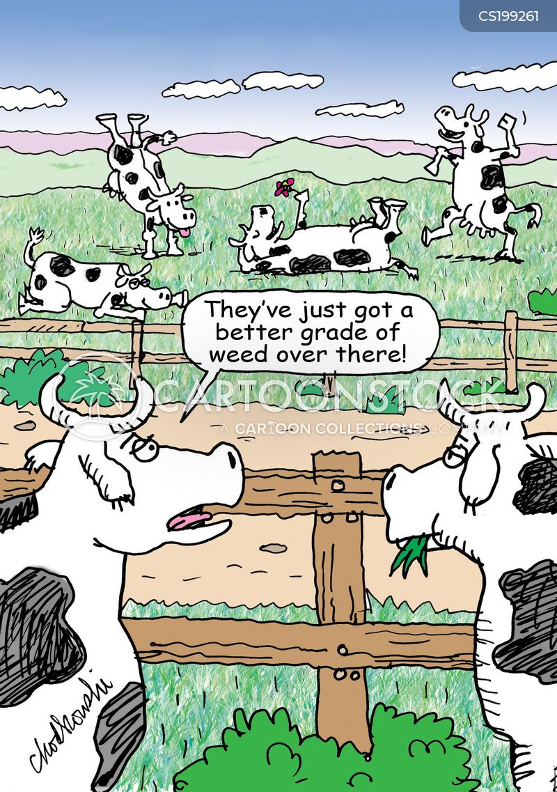 Cow Farm cartoons, Cow Farm cartoon, funny, Cow Farm picture, Cow Farm pictures, Cow Farm image, Cow Farm images, Cow Farm illustration, Cow Farm illustrations