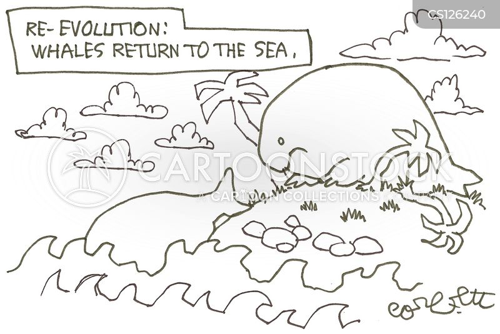 devolutions cartoon