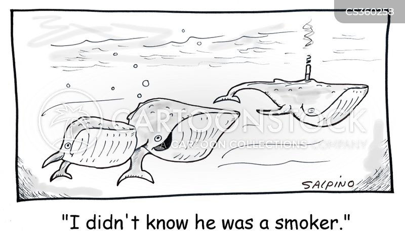 blow hole cartoon