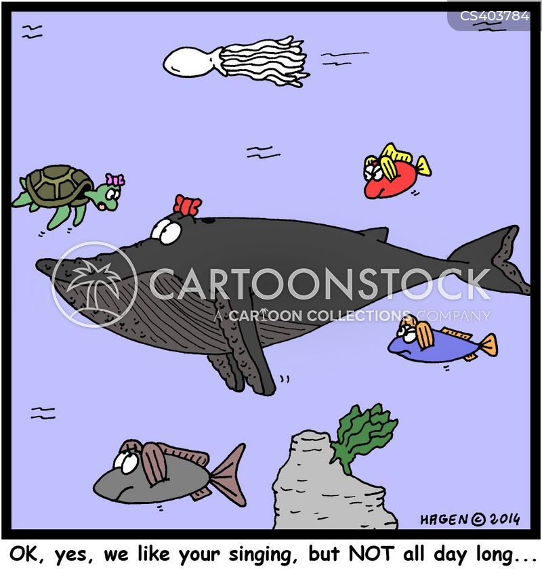 whale songs cartoon
