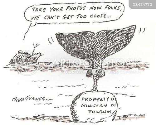 photo opportunity cartoon