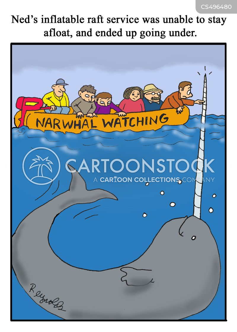 narwhals cartoon