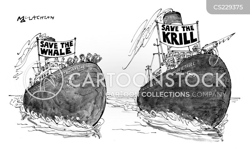 whale hunter cartoon